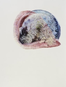 Dandelion, 2012, Colored pencil on paper, 60 x 45 inches
